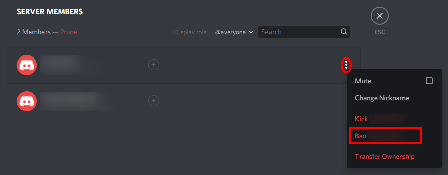 Ban someone from the discord server